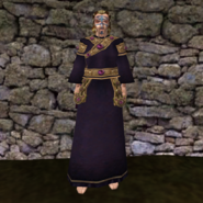Вычурная Мантия 1 (Morrowind) муж