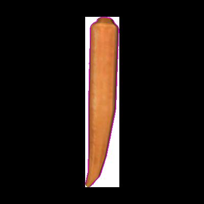 File:Carrot (Oblivion).png