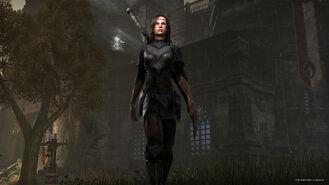 Teso-breton-armor