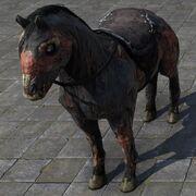 Zombie Horse Лошадь-зомби