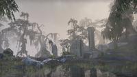 Шедоуфен (Online) — Айлейдские руины