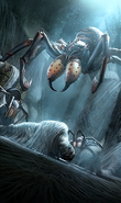 Frostbite Spider card art
