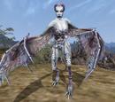 Creatures (Morrowind)