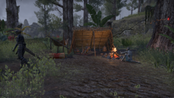 Лагерь корневого-дома