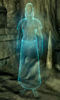 Мать Ночи Oblivion