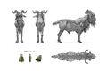Goat Model.jpg