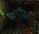 Wraith (Oblivion)