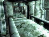 Решётка с шипами (Oblivion)