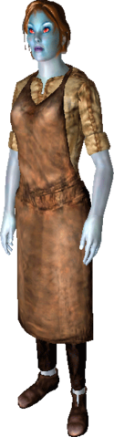 File:Apron of the Master Artisan.png