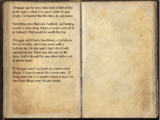 Bleakrock Fisherman's Journal