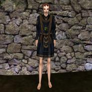 Дорогая рубашка (Morrowind) 8 жен