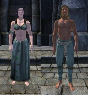 Зелёная шёлковая одежда 1