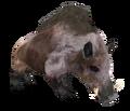 Beast Oblivian boar.png