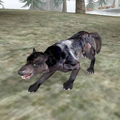 Волк (Bloodmoon)