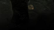 Dark Chasm