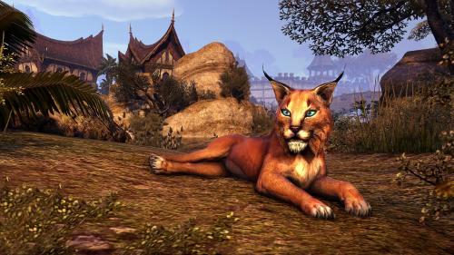 File:Desert Lynx.png