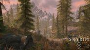 SkyrimVR Forest watermark 1497052188