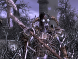 Gniewoczłek (Skyrim)