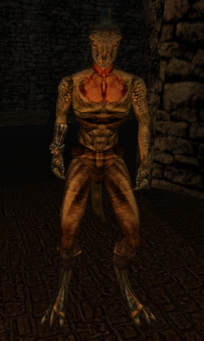 File:Meer Morrowind.png