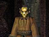 Kapłan Ogrul