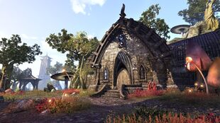 TESO Homestead DunmerMedium 1481018675
