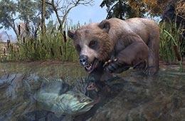 File:Cave Bear Cub.png