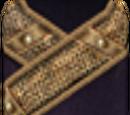 Extravagant Robe