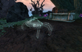 Spectral Mud Crab Close.png