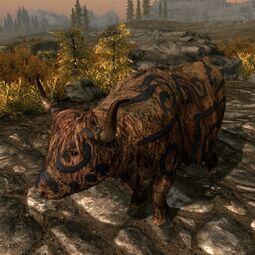 Pomalowana krowa (Skyrim)