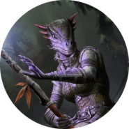 Argonian avatar bob 3 (Legends)