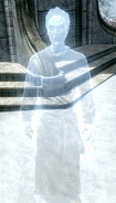 Prelate Nirilor