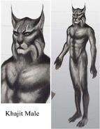 TESV Concept Khajiit Male