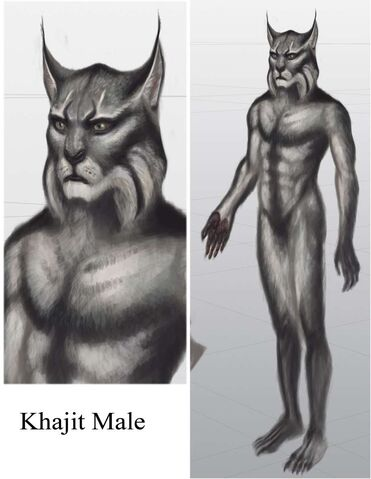 File:TESV Concept Khajiit Male.jpg