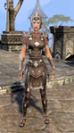 Imperial Disguise Female