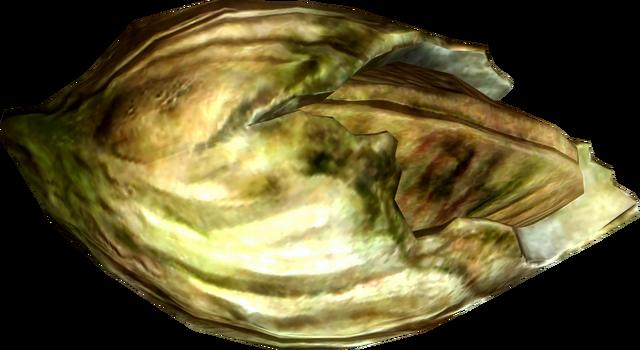 File:Nordic barnacle.png