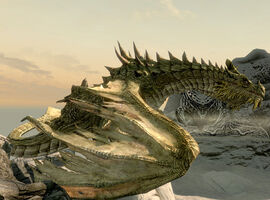 VC-Paarthurnax