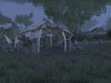 Лесные скакуны