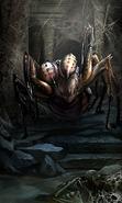Aggressive Spider card art
