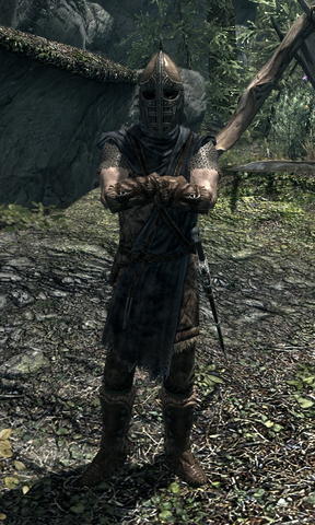 File:Stormcloak Soldier 00027498.png