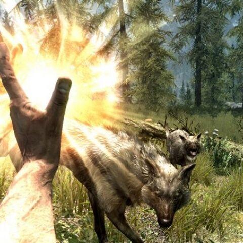 Walka z wilkiem w Skyrim