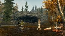 Осенняя поляна 1
