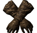 Перчатки борца (Skyrim)