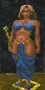 Temple Collector (Daggerfall)