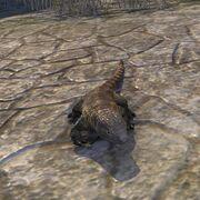 Хельстормская ящерица-предок