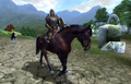 Imperial Legion Horse.png