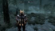 Player Dragon Aspect