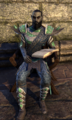 Armiger Eithyna.png