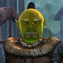 BurzGroKhash face