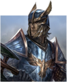 Race-altmer.png