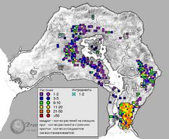 Зеленая хлороцибория карта